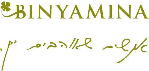 binyamina logo